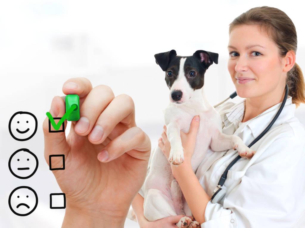 Será que é possível ter clientes mais satisfeitos, aumentar a produtividade, melhorar o fluxo de trabalho e tornar seu negócio veterinário mais competitivo no mercado? Esse é o desejo de…